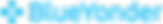 Blue_Yonder_rgb.png
