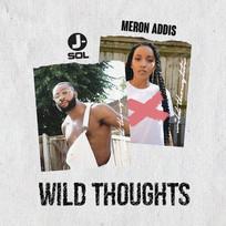 Wild Thoughts w/ Meron Addis