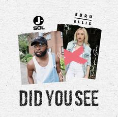 Did You See w/ Ebru Ellis