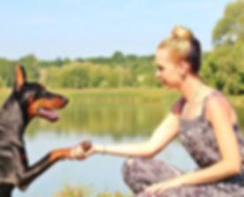 Woman and dog shaking hands.jpeg