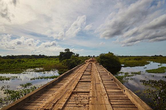 Ponte - Estrada Transpantaneira. Tiago Lima Marcelino,2016