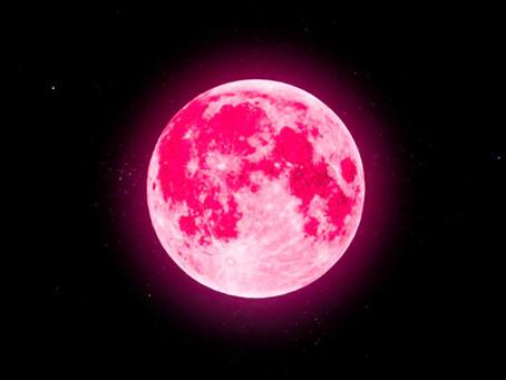 Sneh Joshi's Horoscopes (Sun Signs) Week beg. 26th April 2021