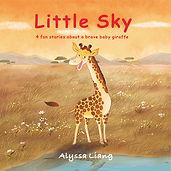 Little Sky-cover.jpg