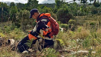 Windfarm | Koala Management | Pest Management | Endangered Animals