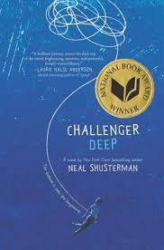 Beautiful Books: Challenger Deep