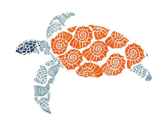 The Seashell Turtle