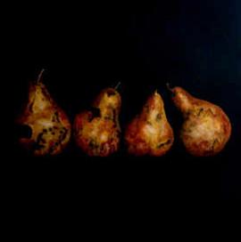 4_pears2.jpg