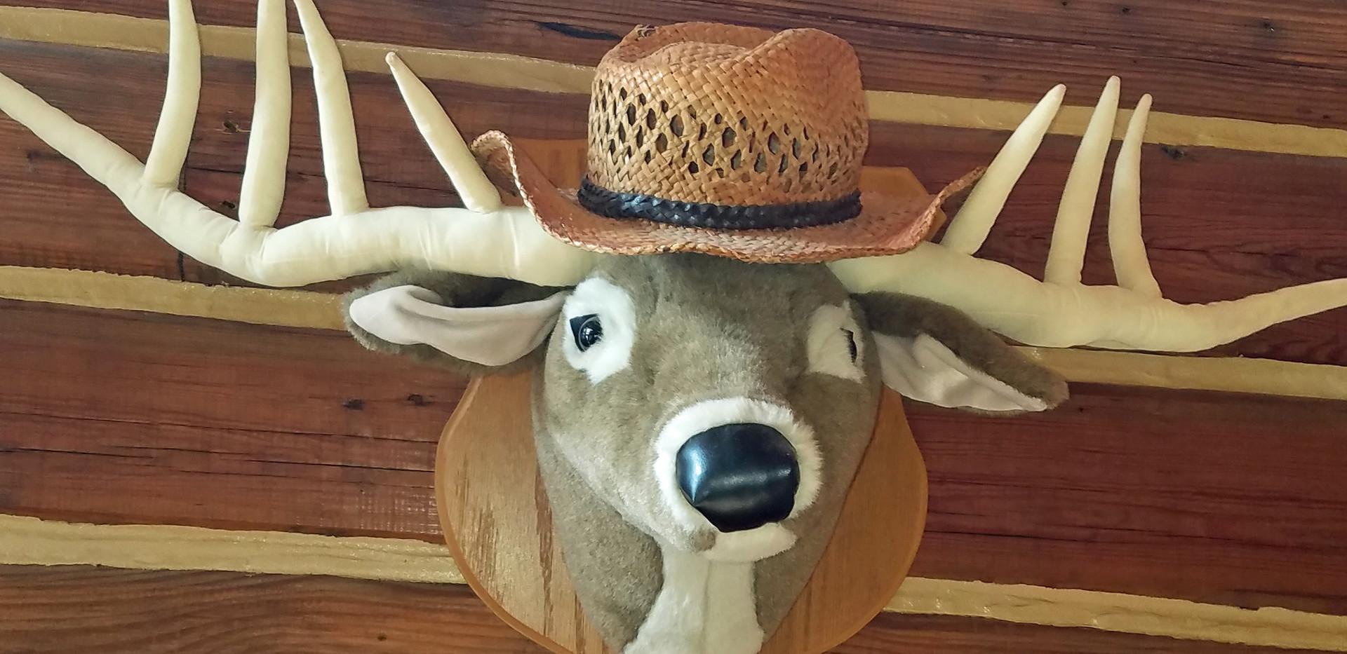 Our cabin mascot