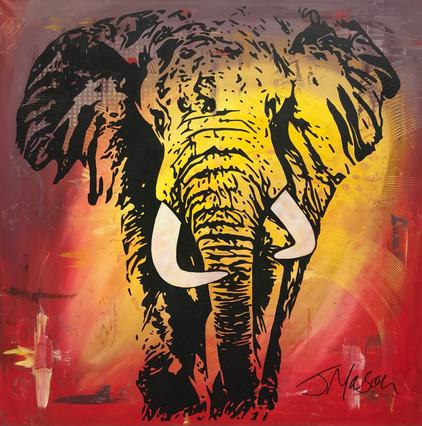 Elephant 1 - 90cm x 90cm