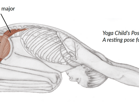 Talking about the PSOAS muscle