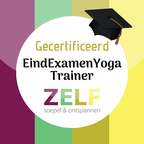 Online opleiding EindExamenYoga-trainer