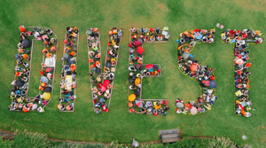 Get naked and divest, areal group image of the divest campaign