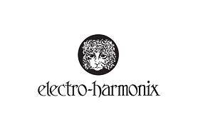 Felipe Barragan Electro Armonix.png