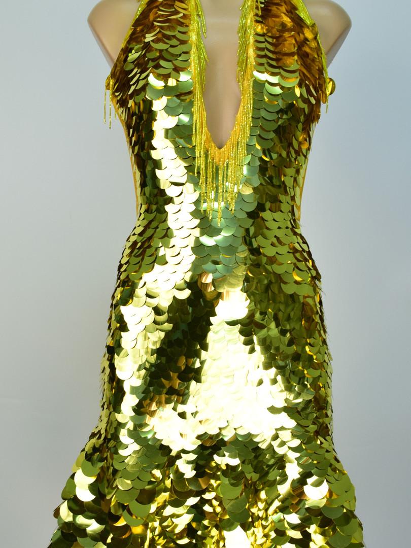 Gold sequinned dress.JPG