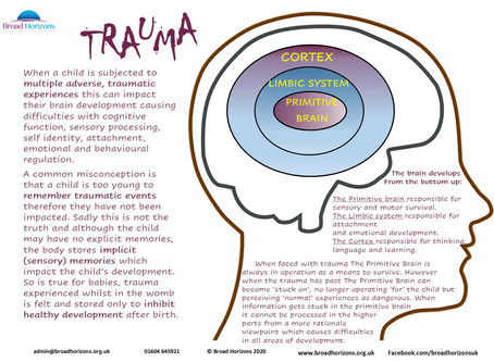 D.A.R.T.S Recognising signs of TRAUMA