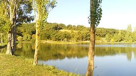 matin au lac.jpg