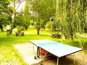 table ping pong.jpg
