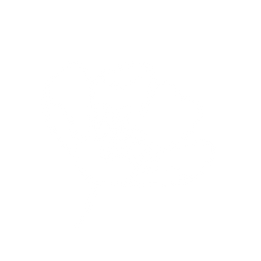Ash Sky Cactus Flower White-01_edited.png