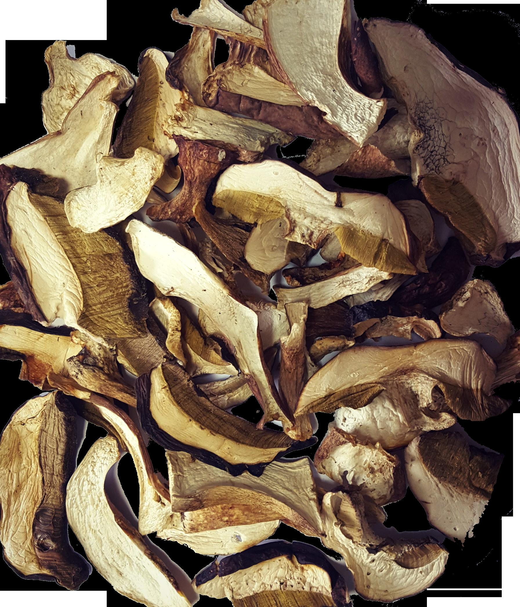 белые грибы как сушить с картинками японии снимают обувь