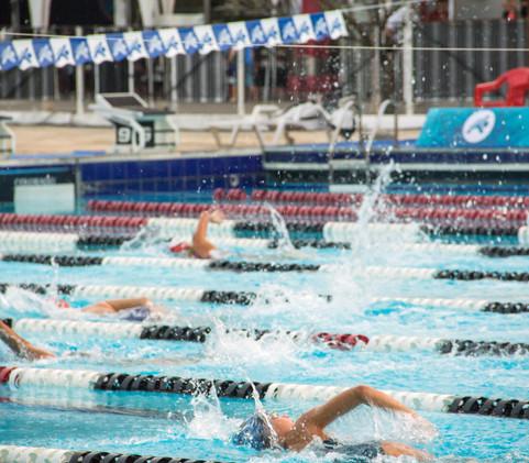 Nadadores durante prova do Troféu Thiago Pereira 2019