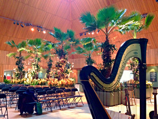 MAR/15: PERFORMANCE AT THE CHICAGO BOTANIC GARDEN ORCHID SHOW
