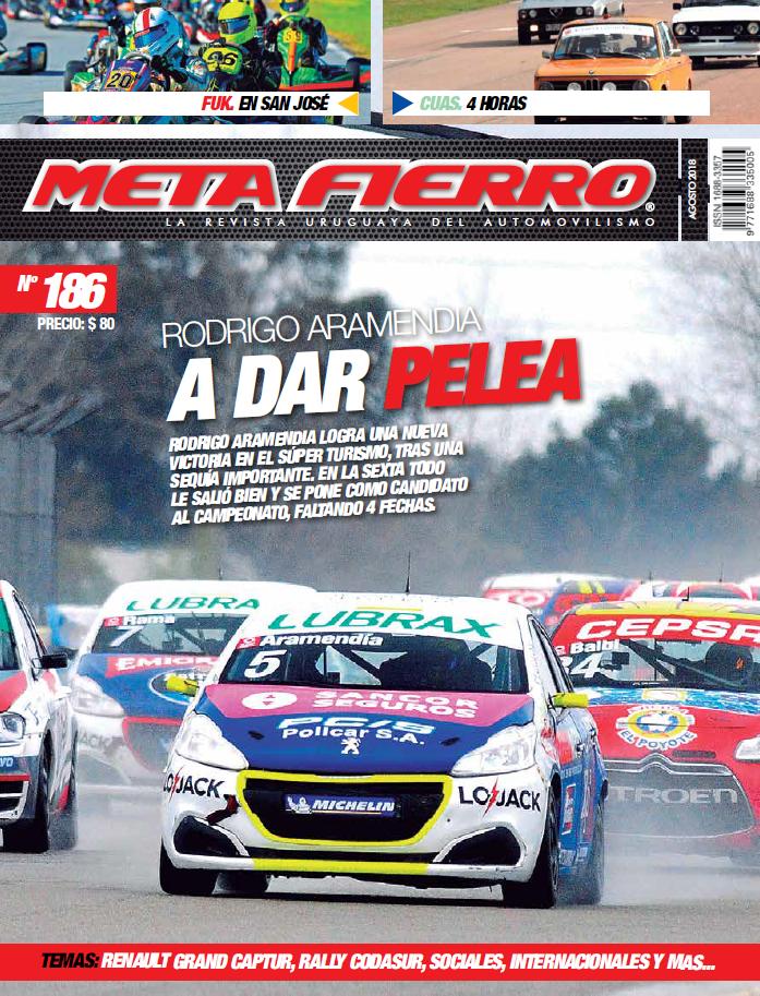 META FIERRO 196