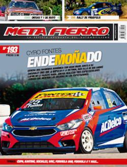 META FIERRO 193
