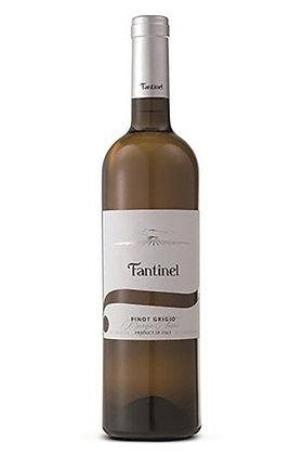 Fantinel 'Borgo Tesis' Pinot Grigio