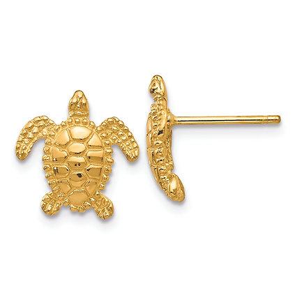 QG 14K Yellow gold Sea Turtle Post Earring