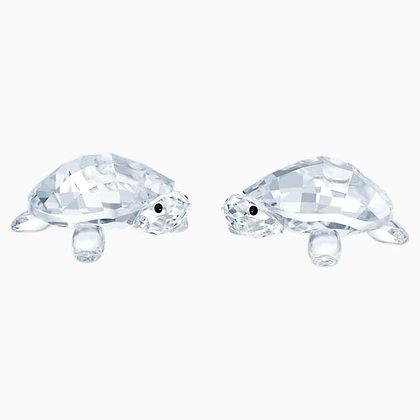 SWAROVSKI Baby Tortoises