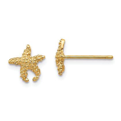 QG 14k Yellow Gold Small Starfish Earrings