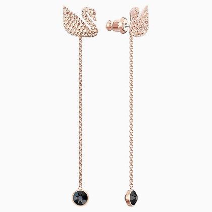 SWAROVSKI Iconic Swan Pierced Earrings, Brown, Rose-gold tone plated