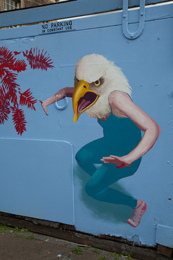 WR-MURAL-eagle-email