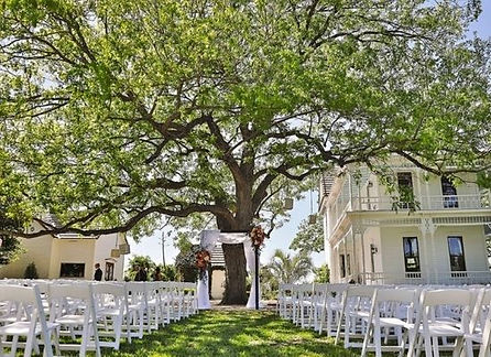 Barr Mansion Austin wedding venues.jpg