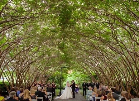 dallas wedding venues.jpg
