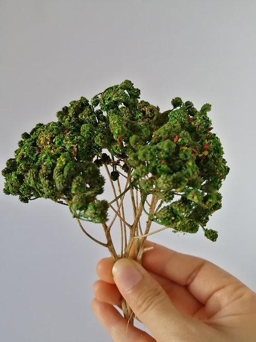 Árbol verde rojizo