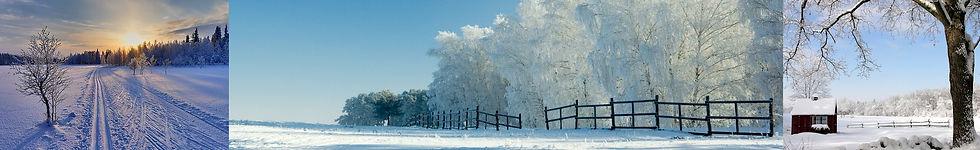 WinterInWisconsinHeader.jpg