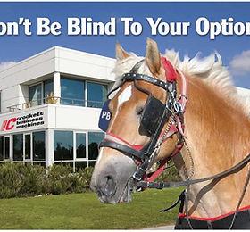 Horseblinder.jpg