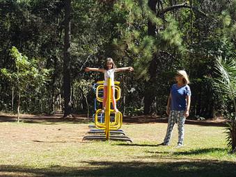 Piquenique, parque, família e diversão
