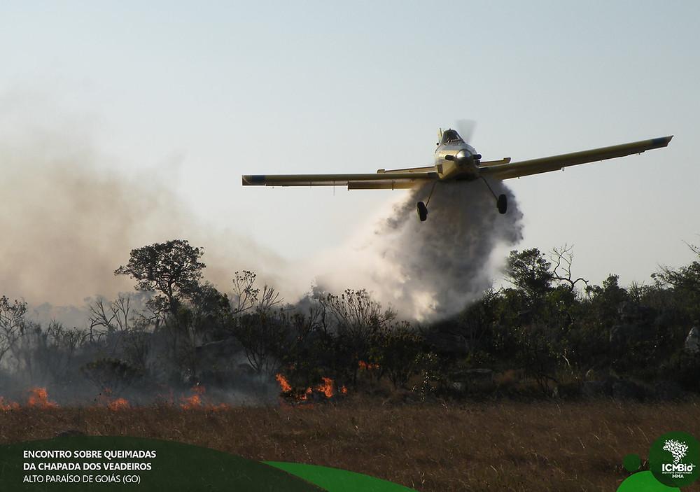 foto: divulgação ICMBIO