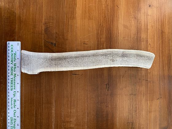 Long Split Elk Antler