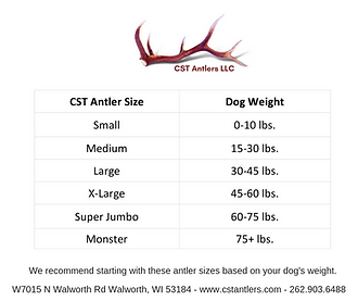 2018 ANTLER SIZE CHART.png
