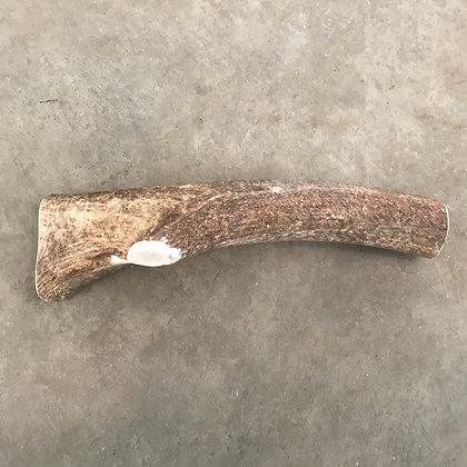 Long Elk Antler