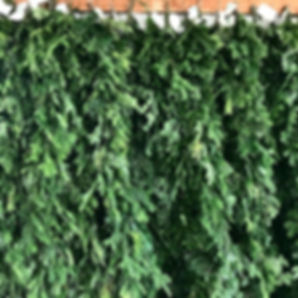 evergreen garland, evergreen roping, fir garlad, pine garland, railing greenery, evergreen, real tree
