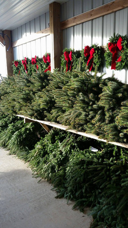 Bundles Boughs Available for Decorating