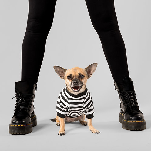 THE PUGSLEY DOG TOP
