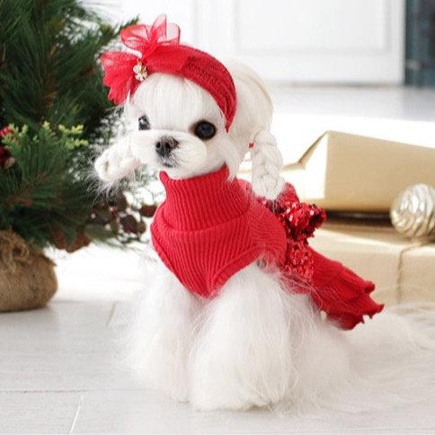 VOGUE DOG DRESS