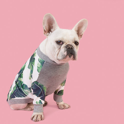 MARSEILLE DOG SWEATSHIRT