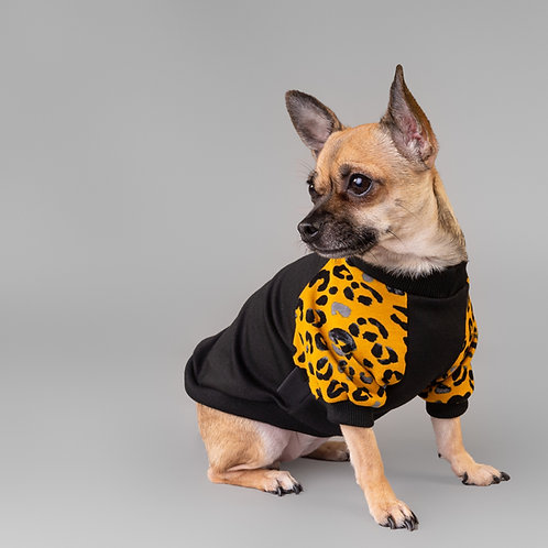 AFRICA DOG SWEATER