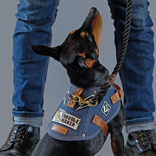 Pethaus denim dog harness